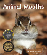 What can we learn about animals from the shape of their mouths, beaks, or bills? What can we infer about animals with sharp teeth compared to large, flat teeth?