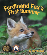 Follow this young red fox as he explores the world around him during the first few months of his life learning to hunt through play and by using his senses.