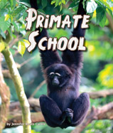 Gorillas using iPads, lemurs finger painting, squirrel monkeys blowing bubbles...these primates are pretty smart! Could you make the grade in Primate School?